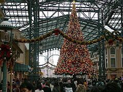 ディズニーランドのクリスマスツリー