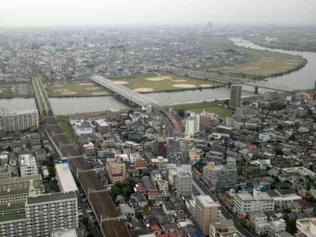 江戸川の眺め